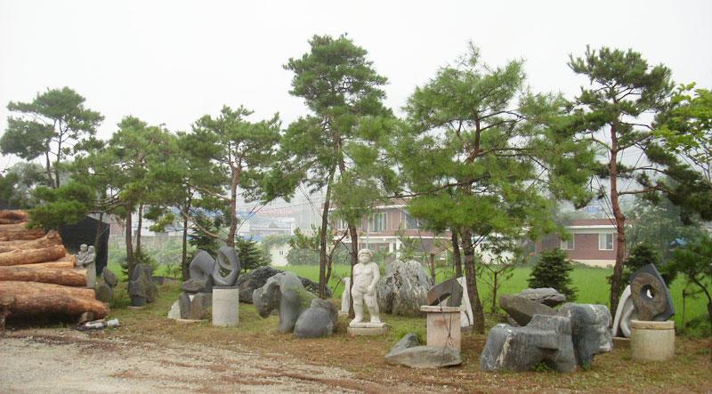 조형소나무